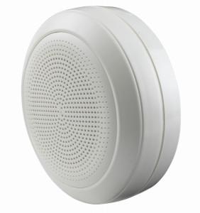 Cabinet Loudspeaker BLC550CR